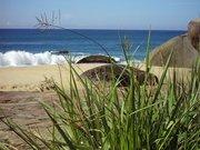 Strand nahe Trindade